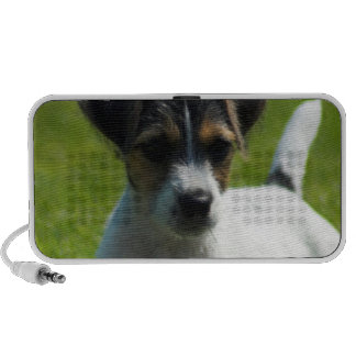Jack Russell Terrier Puppy Portable Speakers
