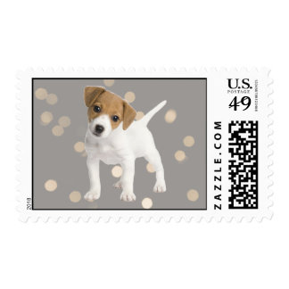 Jack Russell Terrier puppy Postage Stamps