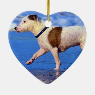 Jack Russell Terrier que corre en la playa Adorno Navideño De Cerámica En Forma De Corazón