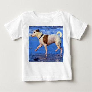 Jack Russell Terrier que corre en la playa Remera