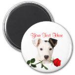 Jack Russell Terrier Red Rose Valentine Design Magnets
