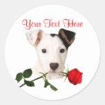Jack Russell Terrier Red Rose Valentine Design Classic Round Sticker