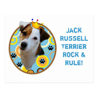 Jack Russell Terrier Rock Rule Postcard