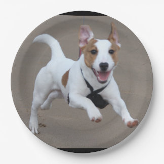 Jack_Russell terrier running 2.png Paper Plate