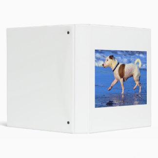 Jack Russell Terrier Running On The Beach Binder