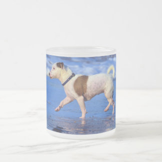 Jack Russell Terrier Running On The Beach Frosted Glass Coffee Mug