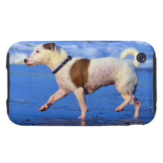 Jack Russell Terrier Running On The Beach Tough iPhone 3 Cover