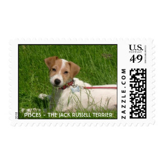 JACK RUSSELL TERRIER STAMP