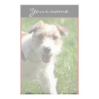 Jack Russell Terrier stationary Stationery