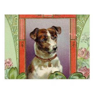 Jack Russell Terrier Tarjeta Postal