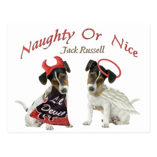 Jack Russell Terrier travieso o Niza Postal
