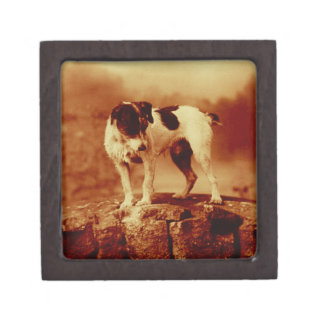 Jack Russell Terrier Vintage Antiqued Jewelry Box
