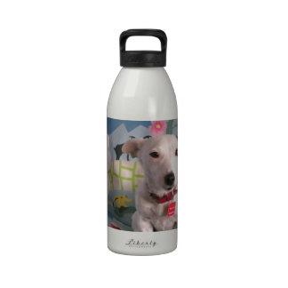 Jack Russell Terrier Reusable Water Bottles