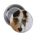 JACK RUSSELL WATCHES BUTTON