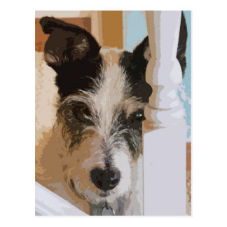JACK RUSSELL WATCHES POSTCARD