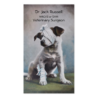 Jack Russell with bandages veterinarian Business Card