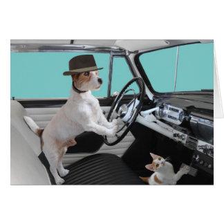 Jack Russell y gato que conducen el coche clásico Tarjeta De Felicitación