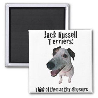 Jack Russells: tiny dinosaurs 2 Inch Square Magnet