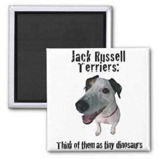 Jack Russells: tiny dinosaurs Fridge Magnet