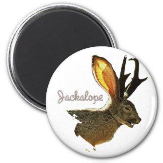 Jackalope Magnet