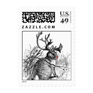 jackalope sospechado rojo pequeño envio