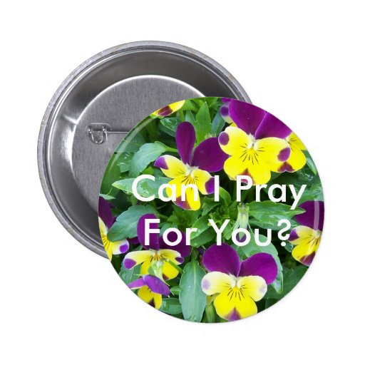 jackanapes viola, Can I Pray For You? Button