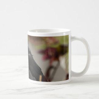jackdaw2.jpg taza de café