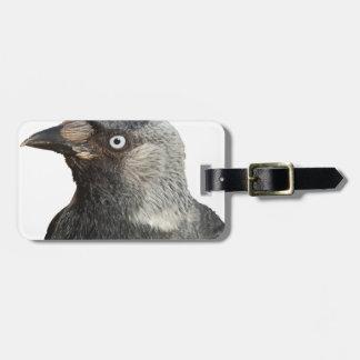 Jackdaw Bird Portrait Vector Bag Tag