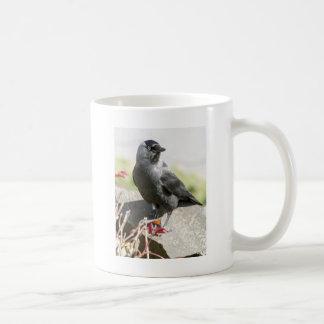 jackdaw.jpg coffee mug