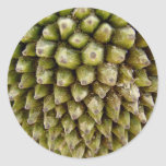 Jackfruit Classic Round Sticker