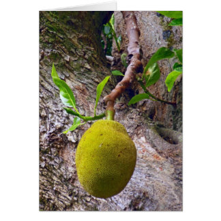 Jackfruit salvaje felicitación