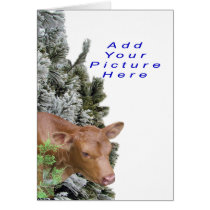 Jacki&PineTree-Customize-Add a picture Card