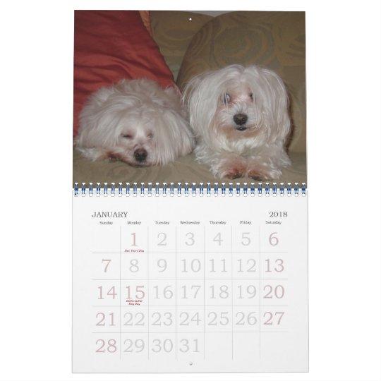 Jackie & Sassy's Wild & Krazy Adventures Calendar