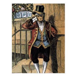 Jacko the Monkey Vintage Illustration Postcard