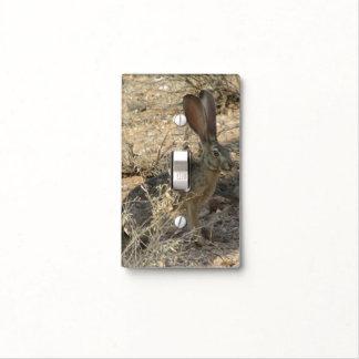 Jackrabbit de cola negra tapas para interruptores