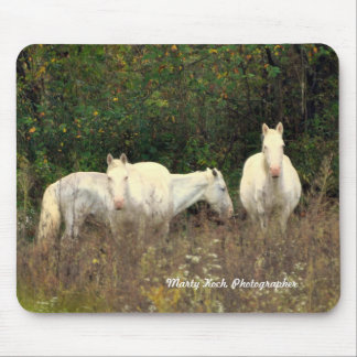 Jack's Fork Wild Horses Mouse Pad