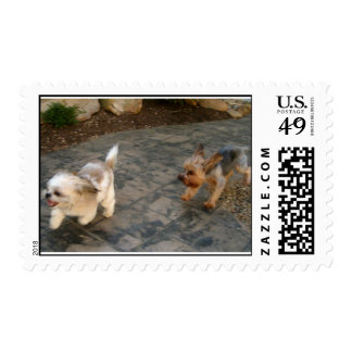 jackson and bitsy postage stamp