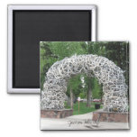 Jackson Hole Antler Arch 2 Inch Square Magnet