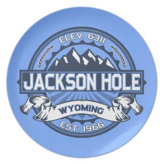 Jackson Hole Blue Party Plate