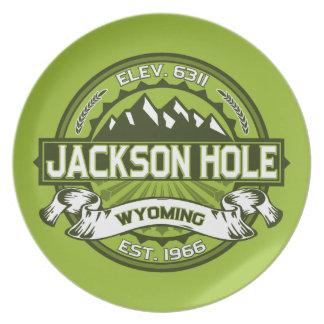 Jackson Hole Green Dinner Plates