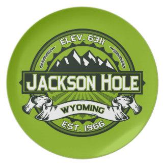 Jackson Hole Green Plates