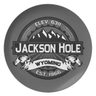 Jackson Hole Grey Plate
