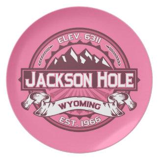 Jackson Hole Honeysuckle Dinner Plates