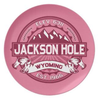 Jackson Hole Honeysuckle Party Plates