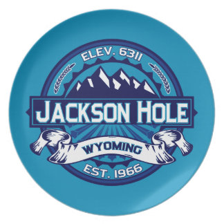 Jackson Hole Ice Dinner Plates