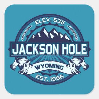 Jackson Hole Ice Square Sticker