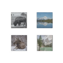 Jackson Hole Magnet Set