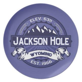 Jackson Hole Midnight Dinner Plates