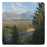 Jackson Hole Mountains and River Trivet