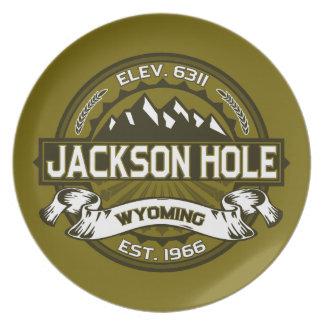 Jackson Hole Olive Party Plates
